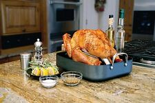 Camp Chef, Sante Series Turkey Cannon Infusion roaster indoor/outdoor TKYC , New