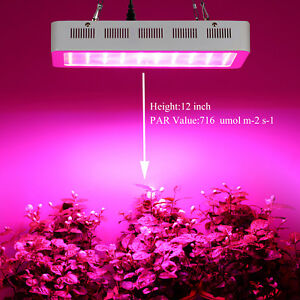 Image Is Loading PopularGrow Dimmable 300W LED Grow Light Larger Size