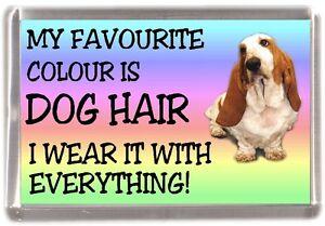 Basset-Hound-Fridge-Magnet-034-My-Favourite-Colour-is-Dog-Hair-034-by-Starprint