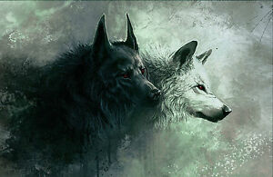 Details about framed print black wolf white wolf picture poster abstract hunting animal
