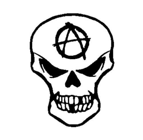 RARE & COOL MINI ANARCHY SKULL R/C TRUCK Anarchist STICKER/Car DECAL ART BY NSI
