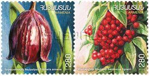 Armenia Stamps Sambucus Tigrani Scott 870-71 Bright In Colour Armenia Mnh** 2011 Flora And Fauna Checkered Lily