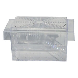 Live-Bearer-Breeder-Floating-Fish-Separation-Hatchery-for-Aquariums-One-Chamber