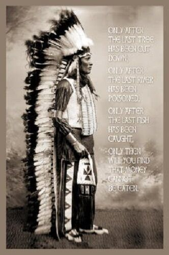 """Chief White Cloud Quotes poster 24 x 36/"""" Money cannot be eaten"""