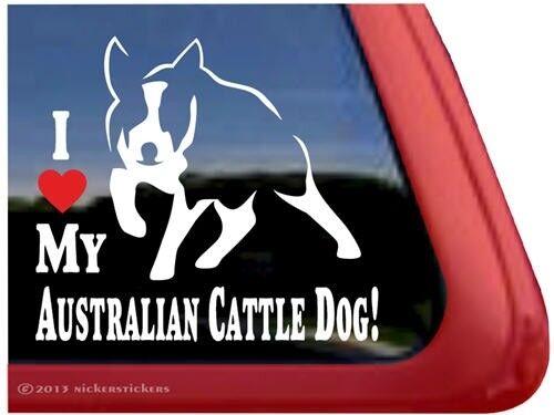 I Love My Australian Cattle Dog Heeler Window Decal Sticker