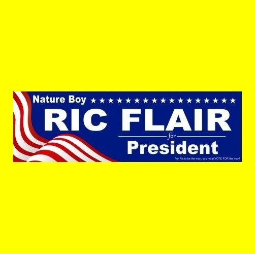 Nature boy ric flair for president nwa wcw wwf wwe bumper sticker funny
