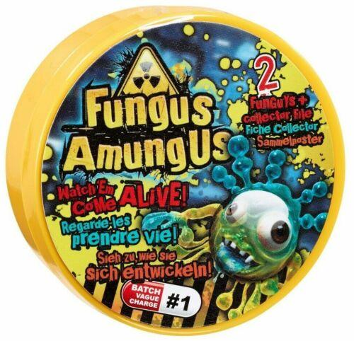 Champignon amungus 5 x Boîte de Petri packs 2 FUNGUYS dans chaque-LOT 1 Neuf Scellé