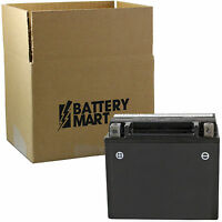 Ytx12-bs Agm Maintenance Free Battery [ytx12-bs]