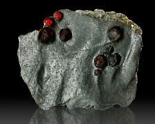 """3.6"""" Fiery Red ALMANDINE GARNETS to 12mm in GRAPHITE Red Ember Mine MA for sale"""