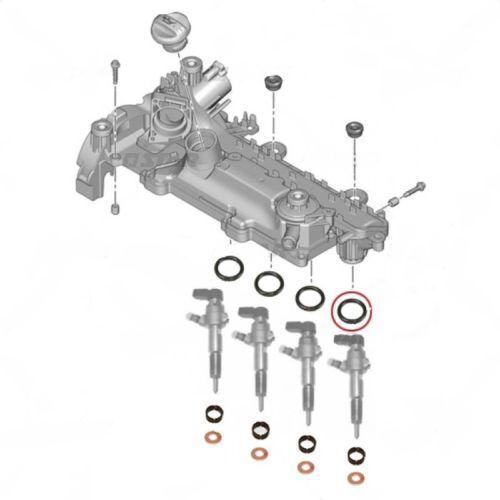 FORD FIESTA 1.4 TDCI CITROEN C1 C2 C3 NUOVO Iniettore Carburante COLLETTORE GUARNIZIONE SET 4pcs