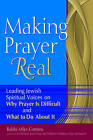 Making Prayer Real: Leading Jewish Spiritual Voices on Why Prayer is Difficult and What to Do About it by Rabbi Mike Comins (Paperback, 2009)