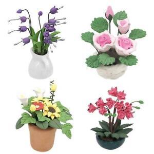 Mini-Dollhouse-Miniature-Plant-Green-Flower-in-Pot-Fairy-Garden-Accessory-O8U4