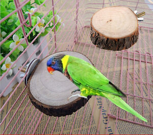 1X-Round-Wooden-Coin-Parrot-Bird-Cage-Perches-Stand-Pet-Budgie-Hanging-Toy-6cm-C