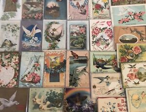 Nice-Lot-of-25-Antique-Greetings-Postcards-with-BIRDS-Bird-in-sleeves-a642