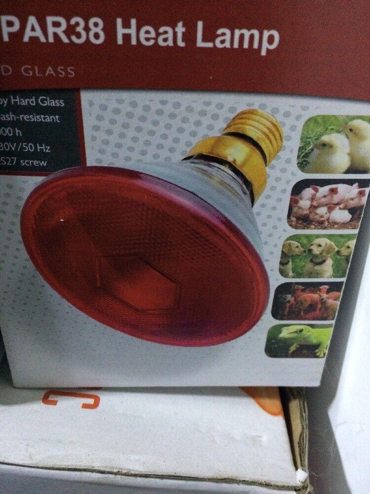 175w PAR38 lampadina a infrarossi per pollame lampada riscaldante, ALLEVATRICE PULCINI, CUCCIOLI x 12