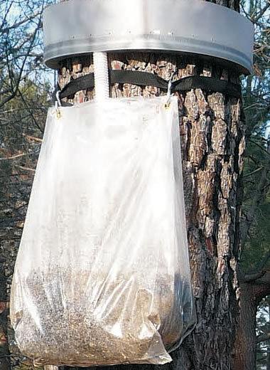Écopiège - chenille processionnaire du pin - Eco piège chenilles diamètre 100 cm