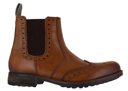 Catesby Wing Uomo Chelsea Distributore Wing scura Scarpe Oxford pelle Toe in IdrZqwxI