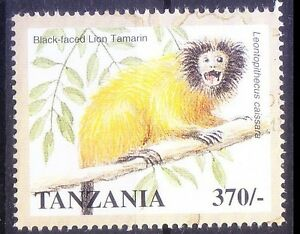 Black-faced-lion-Tamarin-Monkeys-Critically-End-Wild-Animals-Tanzania-1998-MNH