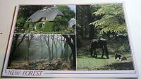 England New Forest Multi-view PHA01390 DRG J Arthur Dixon - posted 1989