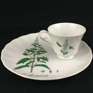 VTG-Snack-Plate-and-Cup-Sigma-Taste-Setter-Botanical-Herb-Menthe-Poivree