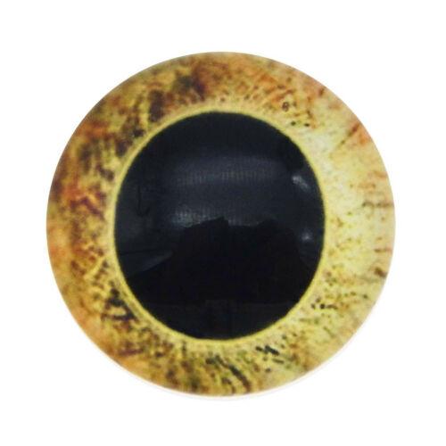 5-25Pairs//lot Dragon Cat Eye Glass Flatback Cabochons Jewelry Making Accessories