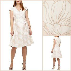 Studio 8 Kleid Größe 26   pink Loretta Style   Phase Eight   OVP   120 £ UVP!
