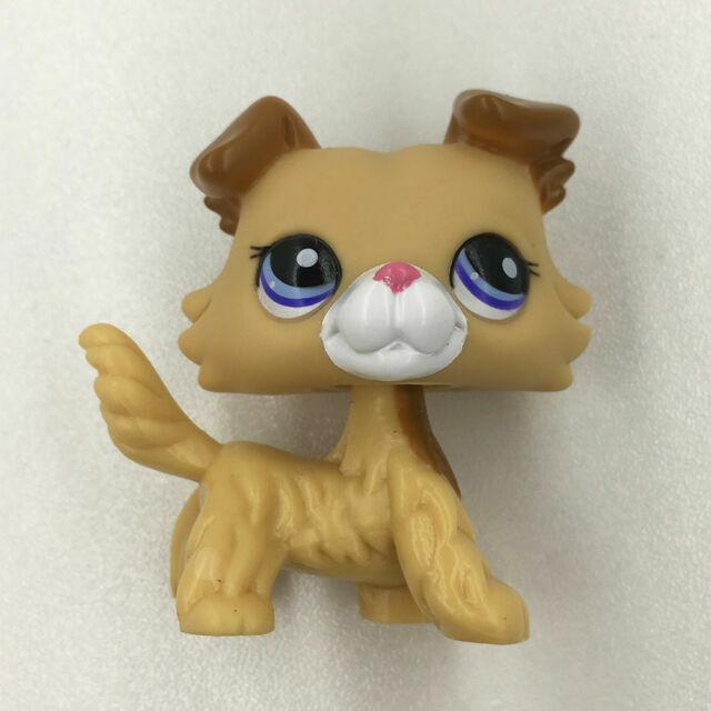 Littlest Pet Shop 2452 Collie Dog Brown Caramel Puppy Blue Eyes LPS Kids Toys