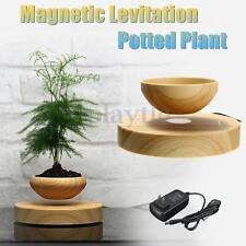 Magnetic Levitation Air Bonsai Suspension Desk Flower Potted Plants Decoration