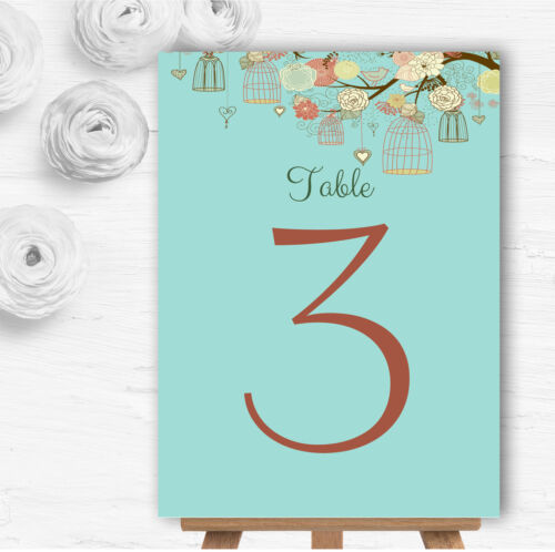 Vintage Shabby Chic Birdcage Turquoise Personalised Birthday Party Invitations