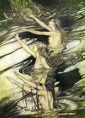 Art Print - (No Title) - Rackham Arthur 1867 1939