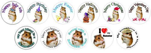 Jumbo assortment of Hamster stickers 315 pieces WATERPROOF 11 designs
