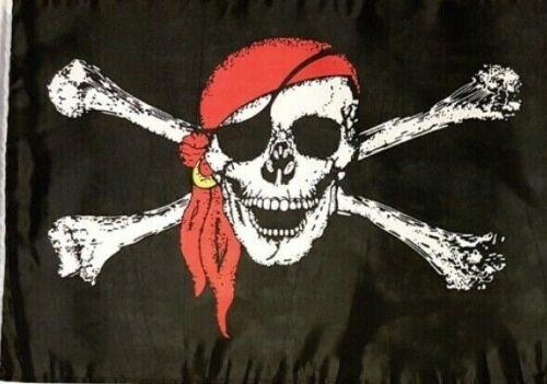 LARGE PIRATE SKULL /& BONES BLACK FLAG DOUBLE SIDDED PLASTIC STAKE GARDEN INDOORS