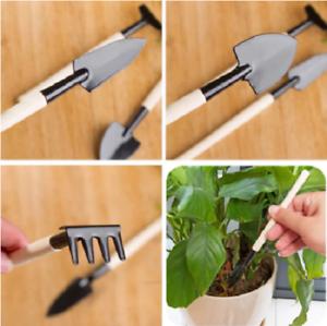 3pcs//Set Planting Flower Succulents Mini Shovel Rake Gardening Hand Tools Plant
