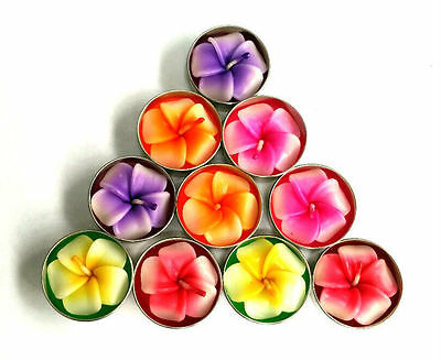 Scented Tealight Candles, Frangipani, Daisy, Sunflower, Mixed Flowers