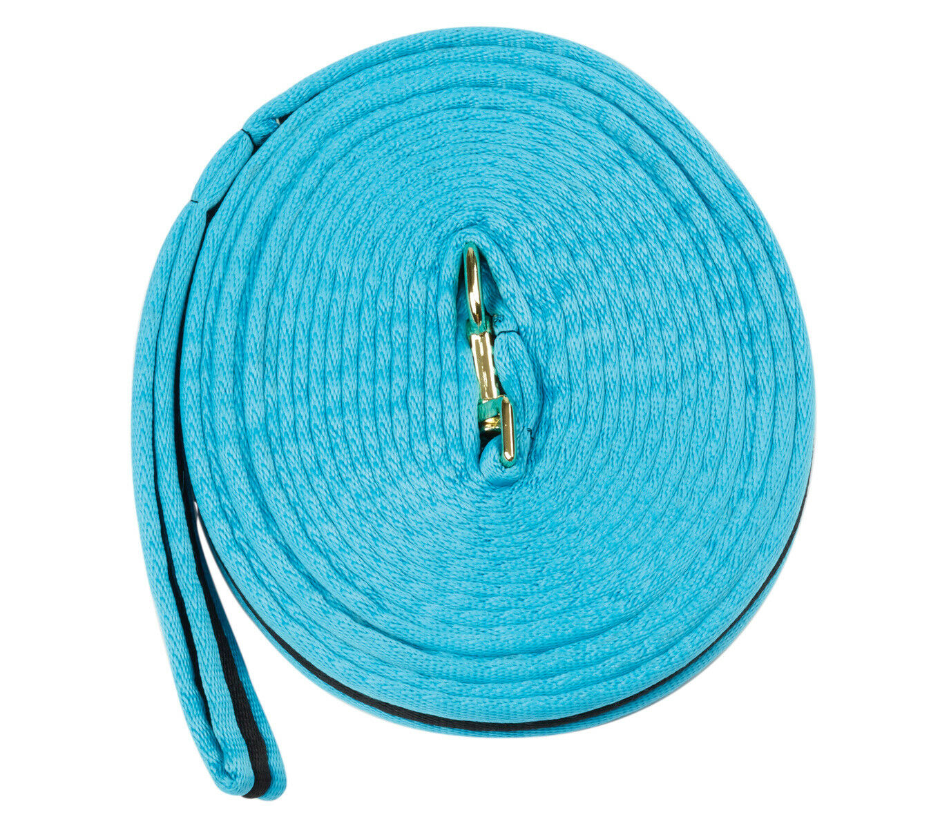 Kincade Brights Two Tone Padded Lunge Line with Hand Loop Horse Training