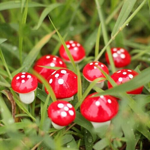 10x Miniatur Pilz Fee Garten Ornament Puppenhaus Topf Decor DIY Handwerk/_F