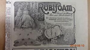 1905-AD-RUBIFOAM-TOOTH-LIQUID-HOYT-CO-LOWELL-MASS