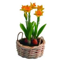 12th Scale Daffodils For Dolls Houses