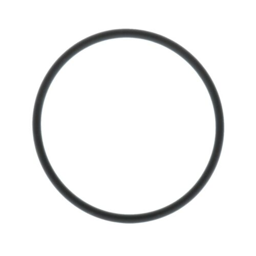 Irritec Replacement O-Ring for Canister Filter