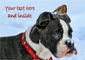 BOXER DOG /& ROBIN CHRISTMAS CARD Personalised /& Illustrated inside Glossy A5