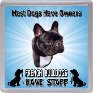 French-Bulldog-Coaster-034-French-Bulldogs-Have-Staff-034-by-Starprint