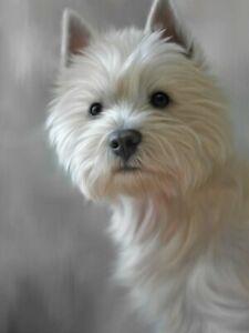 Nigel-Hemming-WEST-HIGHLAND-TERRIER-40TH-ANNIVERSARY-PRINT-Westie-Art-Canine