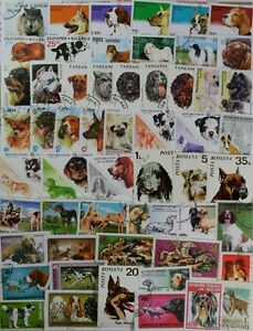 DOGS-100-different-stamp-collection-featuring-Dogs-from-around-the-world-lotDP