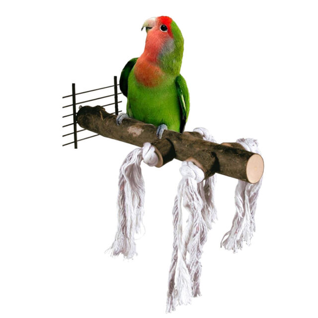 Pet Parrot Raw natural wood Stand Bar Toy Hamster Branch Perches for Bird Cage *