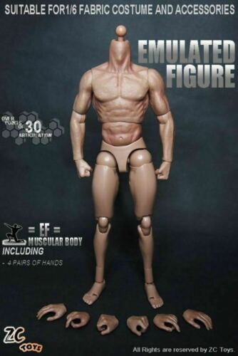 12in ZC Toys Male Action Figure Muscular Body For 1//6 Man Head Model S001