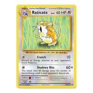 67//108 Raticate Rare NM Pokemon XY Evolutions 2B3