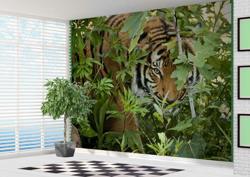 Tapete Tiger Looking Through Bäume in das Jungel Wandbild Foto (21908284)