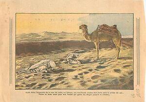 Islamic-Muslim-Musulmans-Sahara-Marchands-Arabes-Chameau-Camel-Algerie-1935