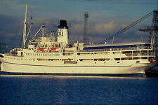535034 DOULOS Former Italian Liner FRANCA C A4 Photo Print