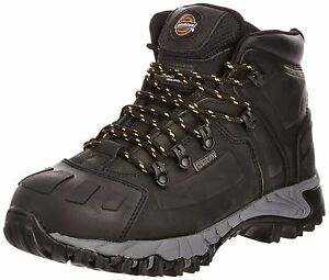 lavoro Medway 12 Safety Dickies uomo Taglia Brown 6 Stivali da impermeabili Hiker da Fd23310 TZxwqYTy56